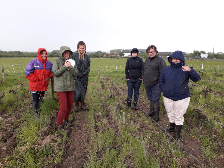 Chaque année du projet Homéo-Iso-Viti-Bio, les vignerons impliqués se retrouvent et échangent leurs expériences.